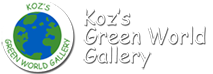 Koz's Green World Gallery - Key West Florida